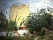 Un cadre idéal pour le développement des plantes