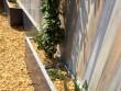 Des bacs intégrés pour planter des végétaux au pied de la clôture