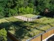 Une toiture végétalisée au compte-gouttes
