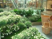 Jardin éphémère aux portes de Paris