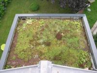 Un jardin au-dessus de la tête