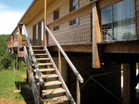 Le bois : architecture des possibles