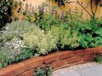 De grandes idées pour les petits jardins
