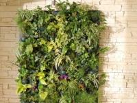Flowall® by Wattelez : mur végétal d'intérieur