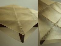 Un nid d'abeille en cuir transparent
