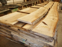 Le bois : pourquoi il est important de faire le bon choix