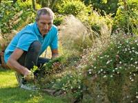 10 conseils de pro pour réussir son jardin