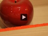 Seconde Nature, retour à l'essentiel (Hervé Gambs - vidéo 2/2)