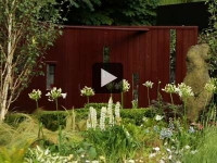 Une minute, un jardin : Remède en herbes dans un jardin (vidéo)