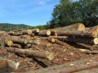 L'engouement pour le chauffage au bois ne se dément pas