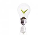 Economies d'énergie : campagne nationale de distribution d'ampoules LED