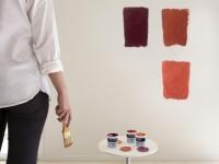 Testeurs de peinture : Tollens lance sa première machine à couleurs