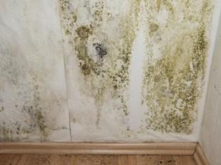 Humidité dans la maison : la détecter et la traiter