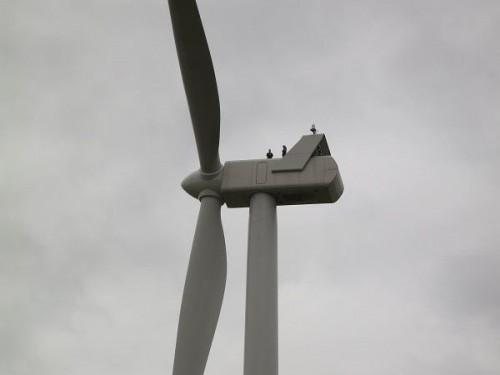 Les bruits des éoliennes n'ont aucun effet sur la santé