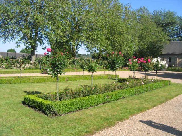 Le jardin Androuet du Cerceau - Prieuré de Saint-Cosme