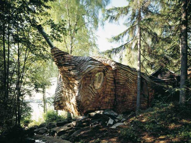 Maison-arbre - Cabane arbre