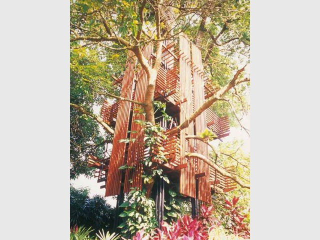Lee - Cabane arbre