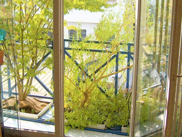 Des jardinières fabriquées par ses soins - jardin suspendu Lyon