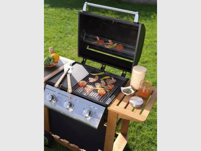 Barbecue naterial avis top plancha - Avis barbecue naterial florida ...