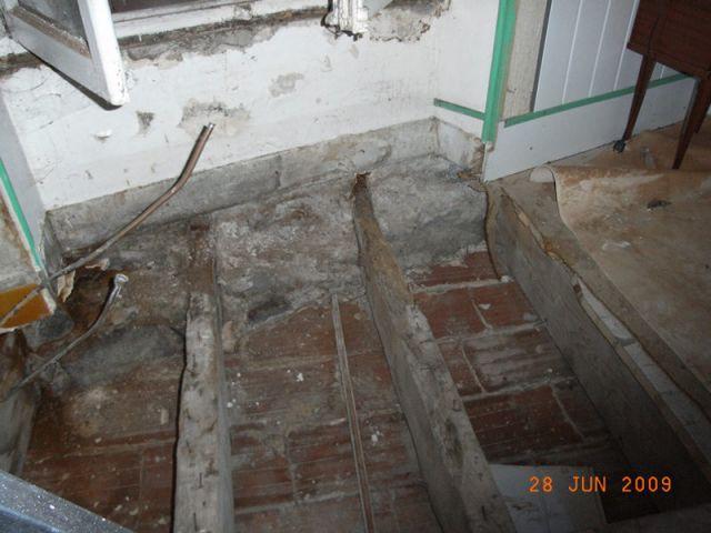 Plancher déposé - Appartement infesté mérules