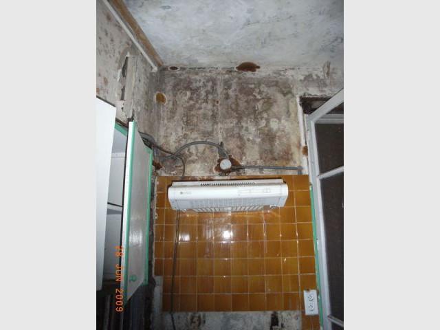 Détail mur - Appartement infesté mérules