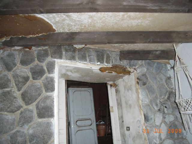 Encadrement de porte infestée - Appartement infesté mérules