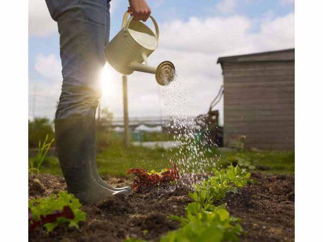Top 10 des tendances du jardinage dans le monde for Jardinage le monde