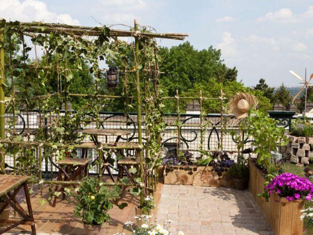 Prix spécial du jury - Jardins en Seine 2011