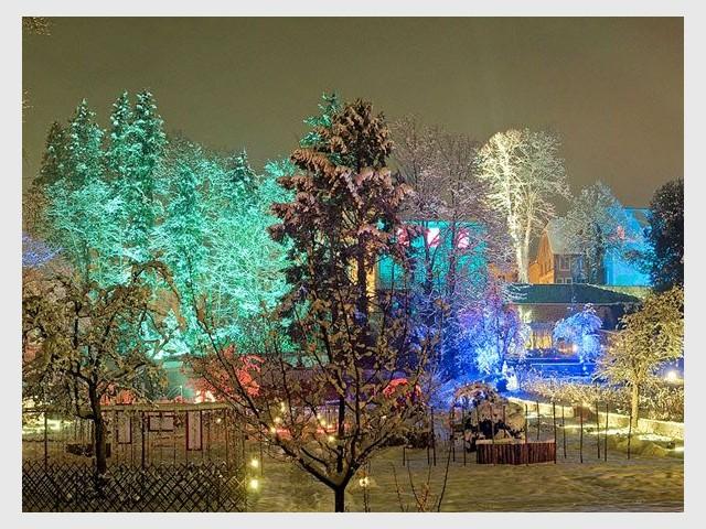 Noël au jardin - Féérie - Noël au jardin