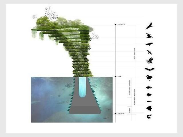 Empilement de strates - Sea Tree