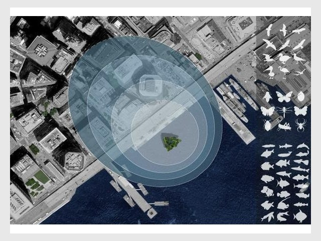 Sea Tree impact écologique