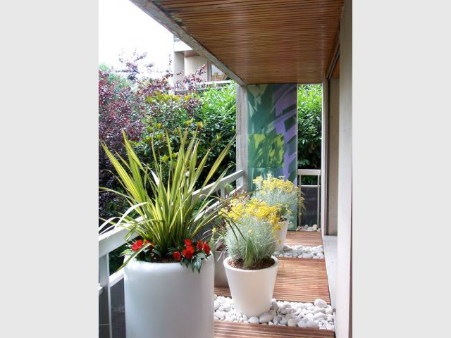 "Ambiance ""Tableau végétal"" - balcon"