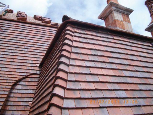 Troph es al onard 2012 le meilleur de la toiture en for Toiture tuile plate noire