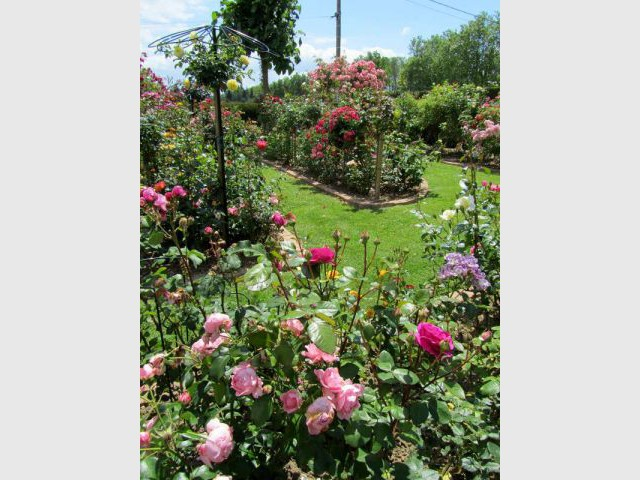 10 exemples de jardins sans pesticides. Black Bedroom Furniture Sets. Home Design Ideas