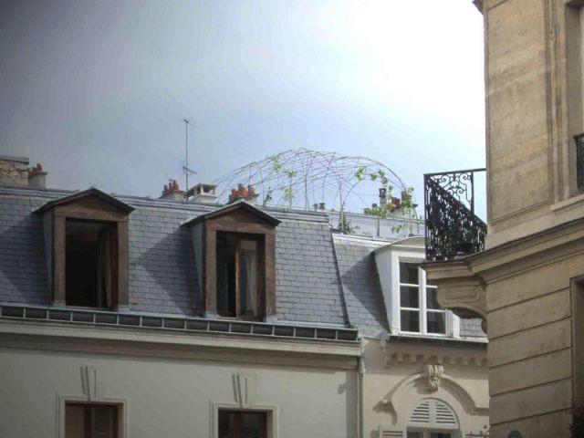 La cabane des toits  - La cabane polypode