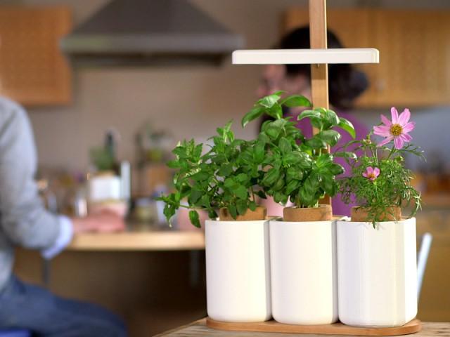 Lilo, le potager d'intérieur avec gestion des nutriments