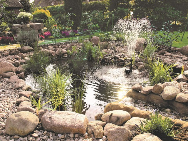 1 beau bassin pour mon jardin for Pierre pour bassin de jardin