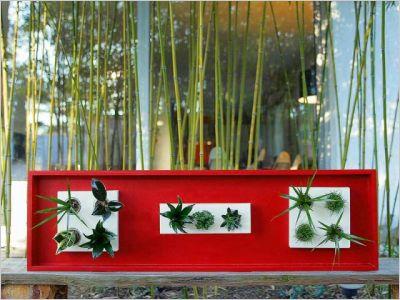 Flowerbox plante décoration mur