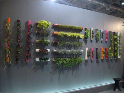Les Plantes S 39 Accrochent Vos Murs Notre Loft