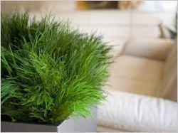 dix accessoires pour prendre soin de ses plantes pendant les vacances maisonapart. Black Bedroom Furniture Sets. Home Design Ideas
