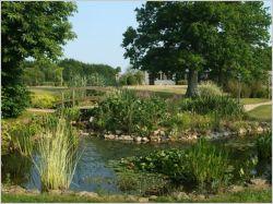 Les Français rêvent d'un jardin vert et potager