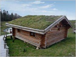 Bien entretenir sa toiture végétale