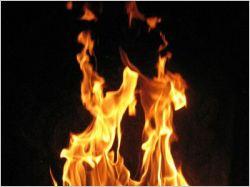 Chauffage au bois : le crédit d'impôt rétabli à 40%