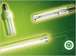 Recyclage des lampes : la dynamique est engagée