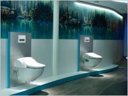 Les WC, seconde source de gaspillage d'eau dans une maison
