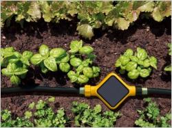 Un jardin facile à entretenir grâce aux objets connectés