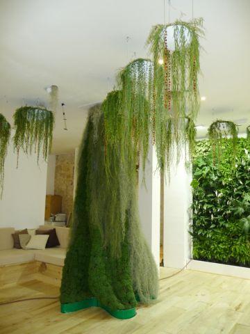 Murs végétaux - Les Jardins de Babylone