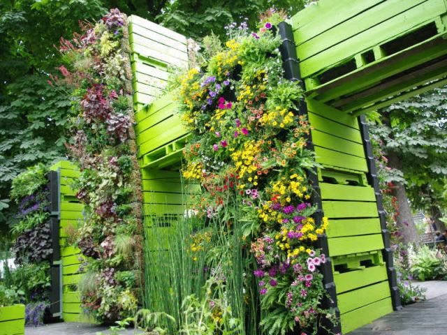 20110530 172953 - Amenagement petit jardin de ville ...