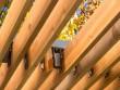 Un toit de pergola en lames de bois ambré