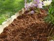 """Un paillage """"magique"""" pour nourrir vos plantes l'été"""